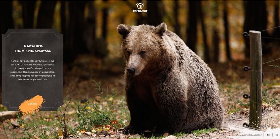 Το μυστήριο της μικρής αρκούδας